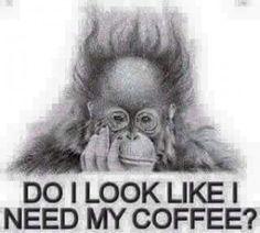Do I Look Like I Need My Coffee?