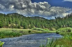 A view of the South Platte River in Park County, CO.