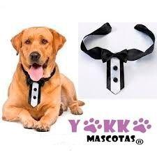 corbata para perro y gato