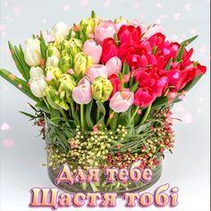 Floral Wreath, Crown, Wreaths, Decor, Floral Crown, Corona, Decoration, Door Wreaths, Deco Mesh Wreaths