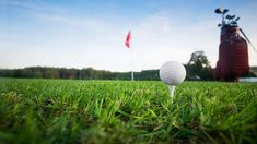 How to Easily Find any Golf Gear You May Need Golf Stores, New Drivers, Backyard Games, You May, Golf Outfit, Golf Ball, Online Games, Card Games, Golf Courses