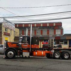 Custom Peterbilt, Peterbilt 359, Freightliner Trucks, Show Trucks, Big Rig Trucks, Old Trucks, Custom Big Rigs, Truck Interior, Heavy Truck