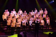 Marcel, Concert, Scouts, Concerts