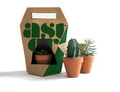 Astor Plants Packaging by Kathleen Rominger – SVA Design Gift Wrapping Techniques, Japanese Wrapping, Japanese Packaging, Art And Hobby, Plant Projects, Flower Packaging, Cactus Y Suculentas, Plant Design, Plant Holders