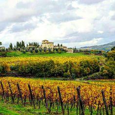 Colors of my soul #chianti #lover  #wonderful #art #tuscany #tuscanyexperience #chiantilife We  Tuscany #beautiful #italy #iloveyou #italia #instacool #instalove #instamood #instatravel #travel #aroundtheworld #igers #igersitalia #igersfirenze #instadaily #instawine  Photo credit: @tanechka10