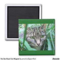 On the Hunt Cat Magnet by Practically Purrfect