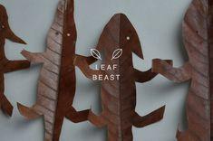 LEAF BEAST ( 葉獣 ) Artist : Baku Maeda Material : Magnolia obovata(ホオノキの葉) 植物の葉の乾燥とともに起きる収縮現象を利用し、 動物に見立てた作品。