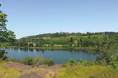 From wildlife-filled wetlands to Washougal& spiffy new waterfront, here are great greenspaces all within 30 miles of downtown. Forest Grove, Forest Park, Prairie Meadows, Oregon Nature, Oregon Landscape, Orchard Park, Downtown Portland, Rock Creek, Walking In Nature