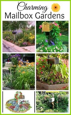 Time to plan your garden projects for this year! How about adding some curb appeal with one of these mailbox gardens?