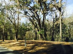 REMARKS: Enjoy coming home to gorgeous majestic oaks with a scenic walking trail conveniently located near I-95 and only 15-20 minutes from Fort Stewart. No flood insurance required and only 24 home sites left. Lots have been reduced and builders are on standby waiting to build your new dream home.