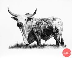 Purchase artwork Tusk (Portrait) - Limited Edition Giclee on Paper by South African Artist Vincent Reid - Limited Editions Sculpture Art, Sculptures, African Artwork, South African Artists, Creative Artwork, Wildlife Art, Art Portfolio, Pencil Art, Art Studios