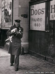 An RAF Serviceman delivers a dog to Battersea Dogs home, it had been found within the rubble of a bombed out street. WWII An RAF Serviceman delivers a dog to Battersea Dogs home, it had been found within the rubble of a bombed out street. War Dogs, Vintage London, Vintage Dog, Old London, Blitz London, Battersea Dogs Home, The Blitz, Fiction, Battle Of Britain