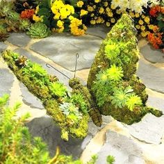 Butterfly, with moss-growth, as a garden-sculpture