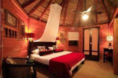 garden route game lodge south africa - Bing images
