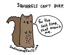 These Very Sad Animal Facts Will Actually Make You Smile