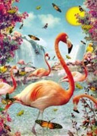 Affiche Flamand Rose Max Hernn disponible online www.alice-valras.fr et chez Alice à Valras-Plage