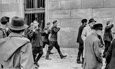 The 1956 Hungarian Revolution – in pictures Border Guard, Budapest Hungary, Life Magazine, World History, The Guardian, Revolution, Past, Art Projects, Pictures