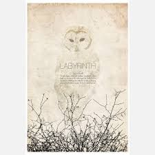 Image result for white owl labyrinth