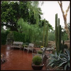 Here comes the rain! Earlier this morning the Garden received a nice downpour. Pictured is Eliot Patio near Ullman Terrace. #azmonsoon #rain #myphx