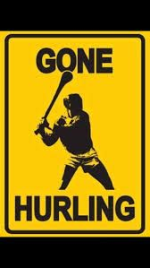 artists who paint hurlers or ancient hurlers Irish Memes, Irish Quotes, Irish Humor, Rugby Memes, Native American Quotes, American Symbols, American Indians, Irish Celtic, Fighting Irish