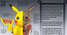 Have you ever realized how little youactually know about Pokemon? No matter how many Pokemon you've caught, you probably don't have a precise idea of what's going on with Pokemon biology. What do Pokemon look like on the inside? What makesthese crazy little dudes tick, or rather what wo...