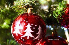 Ciao amici e amiche del mio blog . Oggi vorrei ringraziare la mia amica blogger Shioren per avermi taggata con un nuovo Tag che si chiama Christmas Tag . Vi invito a visitare il suo blog p…
