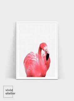 He encontrado este interesante anuncio de Etsy en https://www.etsy.com/es/listing/470990145/flamingo-flamingo-impresion-arte-de