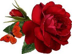 Resultado de imagem para significado rosa de saron