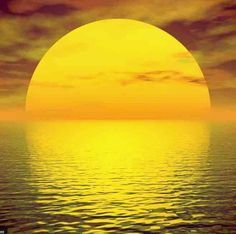 The sun! - the best source of vitamin D! We get approximately 90% of our vitamin D from natural sunlight and 10% from food sources.