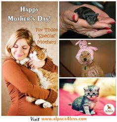 #Share if you also have a 'special baby'! #HappyMothersDay #SpecialMoms    Visit: www.alpaca4less.com