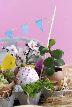 Egg carton easter garden: Πως να φτιάξετε έναν μικρό κήπο σε μια αυγοθήκη!