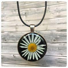 """Ketten kurz - Kette """"Sonnenschein"""" echte Blüte Mutterkraut - ein Designerstück von Kiezelfen bei DaWanda"""