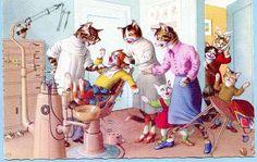 Mainzer cats postcard Kitten visits the dentist, Mainzer dressed cats, Postcard…