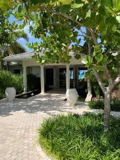 Our garden is a large part of Calabash. Here you will not only find balance and tranquillity but there is also a lot to discover. Jermaine is a great guide and will give you a great tour. Mood Images, Main Entrance, Caribbean, Beach House, Maine, Most Beautiful, Pergola, Tours, Outdoor Structures