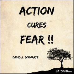 """Action cures fear !!"" David J. Schwartz"