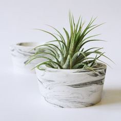 """Airplant holder """"marble"""" by STUDIOGWEN on Etsy https://www.etsy.com/listing/259949202/airplant-holder-marble"""
