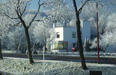 winter in nieuwegein (aapje595) Tags: winter white site johanna nieuwegein jutphaas thewhitehouse 22december solinger bartsolinger