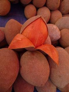 Zapote - Mamey, one of my childhood favorites Fruit And Veg, Fruits And Vegetables, Fresh Fruit, Strange Fruit, Dominican Food, Puerto Rican Recipes, Beautiful Fruits, Exotic Food, Caribbean Recipes