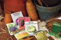 Best vegetable seed companies! Great article and the best place to start the season.  - from Mother Earth News