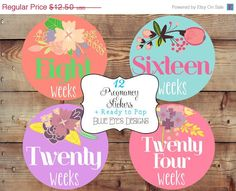 ON SALE Weekly Pregnancy Stickers,Pregnancy Reveal,Pregnancy Announcement Stickers,Pregnancy Weekly Stickers,Colorful Weekly Pregnancy Stick on Etsy, $10.00
