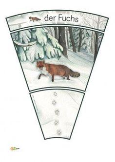 Thema Winter Im Kindergarten, Animal Footprints, Fox Squirrel, Snow Forest, Animal Tracks, Sensory Bottles, Woodland Party, Forest Animals, Winter Time