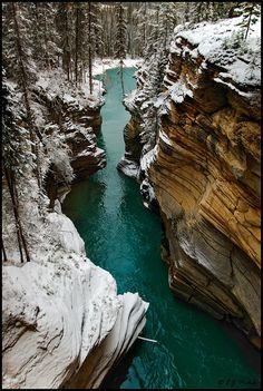 //Jasper National Park, Canada//