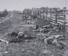 Mathew Brady on the Antietam battlefield 1862.   My love of Zouaves should not imply I also love war.