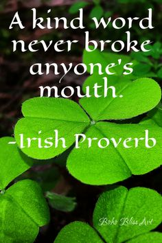 Ireland: Blessings, Proverbs, Quotes & Toasts eBook contains 50 photographs and images with a bless The Words, Kind Words, Irish Proverbs, Proverbs Quotes, Proverbs 29, Irish Toasts, Irish Culture, Irish Blessing, Blessing Words