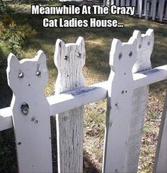 Hmm, furry new fence idea!-could actually see myself doing this in a westie silhouette !!!