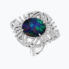 Captivating Chinese Writing Black Opal Ring   Kat Florence