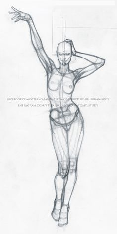 #anatomy #anatomia #disegno #draw #drawing #pencil #art