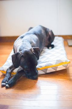 Dog Pillow Bed with Zipper