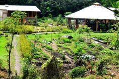 Ecoaldea instalada en Vilcabamba plantea una forma de vida saludable que atrae…