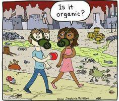 Cartoon over 'biologisch' eten. Lees: https://kijkjebijdebuuren.nl/opvoeding/waarom-biologische-voeding-eten/